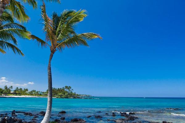 TN-Multisports-Event-Hawaii703